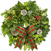 Luxury Holly Wreath on 8Inch Lush Moss Ring