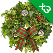 3 x Luxury Holly Wreath on 8Inch Lush Moss Ring