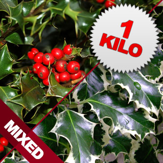 1 Kilo of Mixed Berried & Unberried Cut Holly
