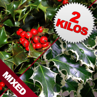 2 Kilos of Mixed Berried & Unbrreied Cut Holly
