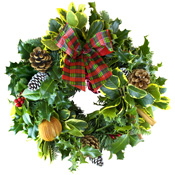 Luxury Holly Wreath on 10Inch Moss Ring